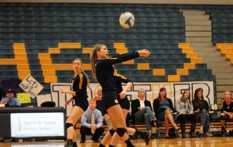 Volleyball sweeps Northview, advances to regional finals