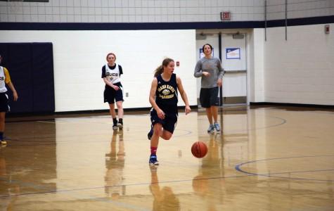 Senior Amanda Merz finds success through scrappy play and hard work
