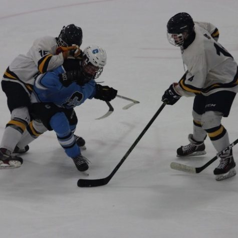 Hockey team takes hefty defeat in final home game