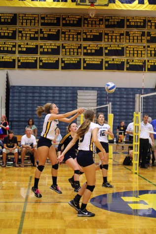Volleyball conquers quad
