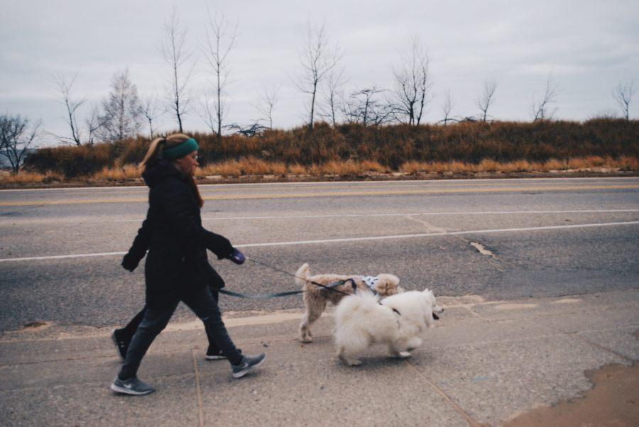 Two participants walk by the beach with their furry friends. The 5k route started at North Ottawa Hospital that made a loop past the lake and Butch's Beach Burritos, then made its way back to the Hospital.