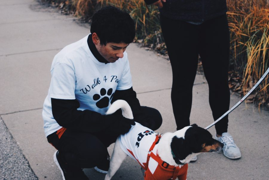 Junior Zachary Tyler cares for one of the two dogs that were up for adoption.