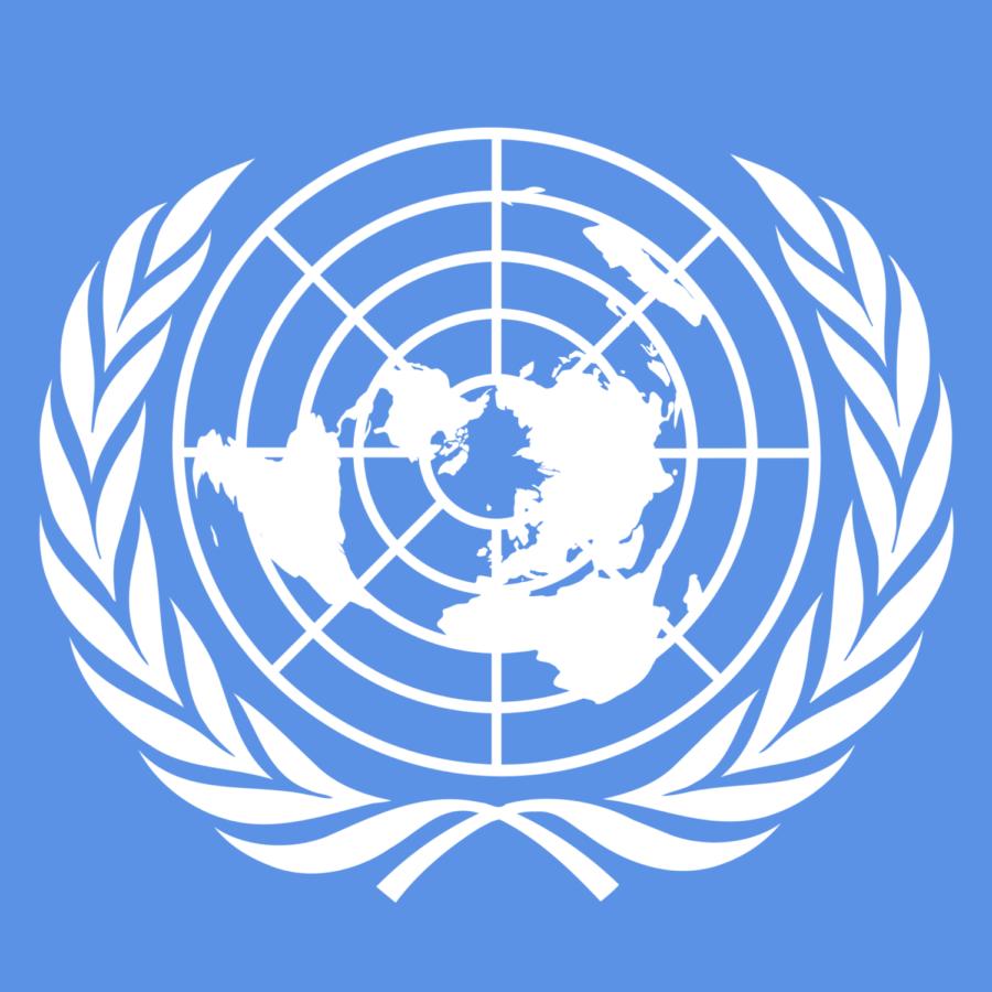 Model UN succeeds at Ann Arbor