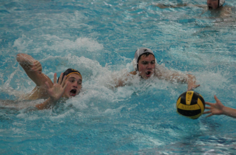 "Bucs water polo in ""survive and advance"" mode this weekend at regionals"