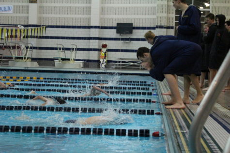 New leadership and strong chemistry look to propel swim & dive