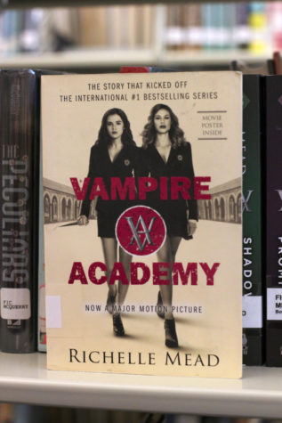 Vampire Diaries a literature dream come true