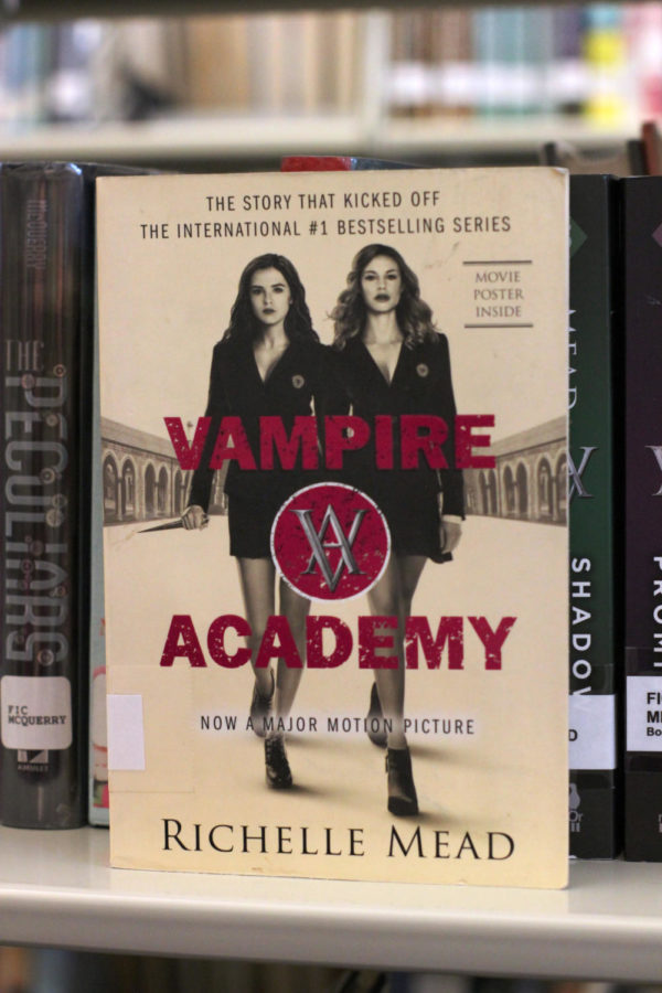 Vampire Diaries a literature dream come true