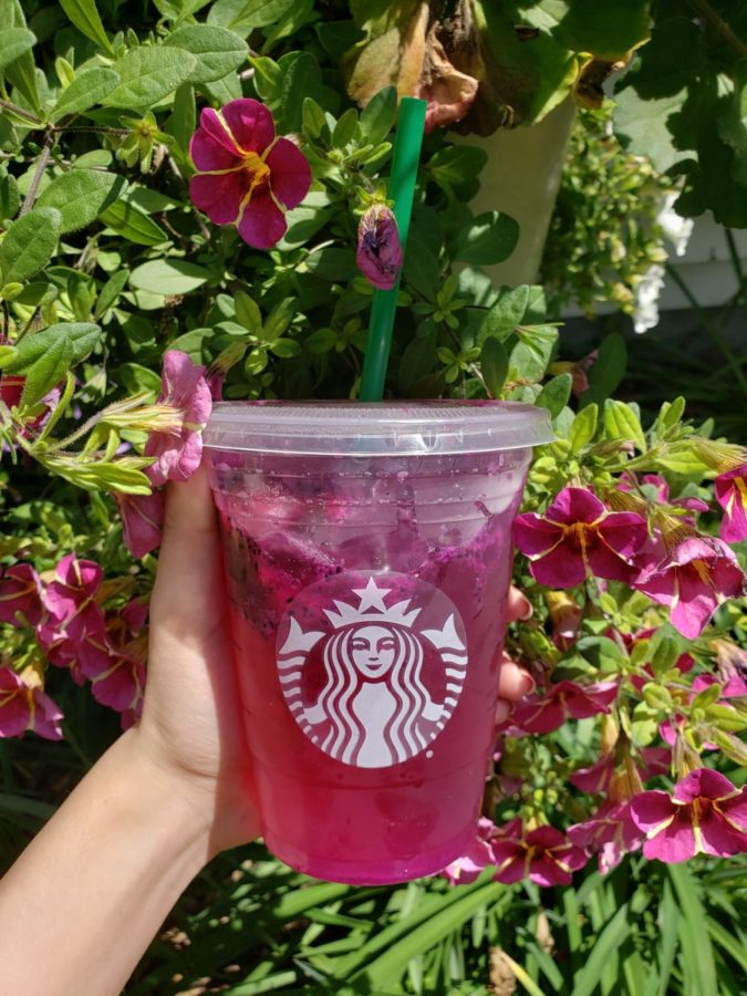 Starbucks mango dragon fruit refresher will grow on you