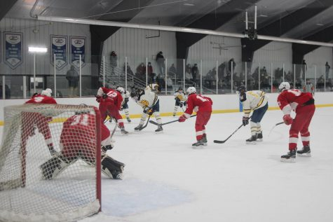 Boys hockey defeats Northview