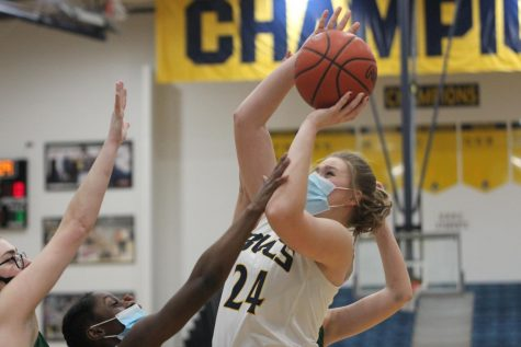 Girls basketball defeats Reeths-Puffer in district game